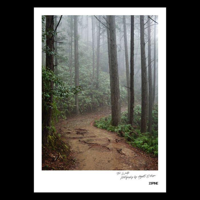 The Walk #6