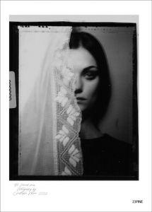 Polaroids #6