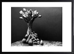 Tulips & fruits