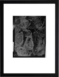 Grey Roses