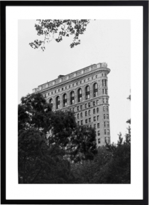 Flatiron From Madison Square Park